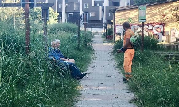 Torino, giardini di via Sospello: nell'erba alta scompaiono anche le panchine